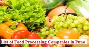 Food Processing Companies